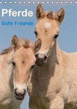 Pferde Gute Freunde (Tischkalender 2018 DIN A5 hoch) von Bölts,  Meike