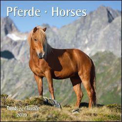 Pferde Horses 2019 – Broschürenkalender – Wandkalender – mit herausnehmbarem Poster – Format 30 x 30 cm von DUMONT Kalenderverlag