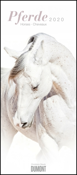 Pferde – Horses – Chevaux 2020 – Pferde-Kalender im Hochformat 30 x 68,5 cm von DUMONT Kalenderverlag, Slawik,  Christiane