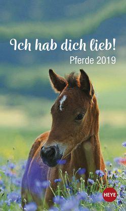Pferde ich hab dich lieb! – Kalender 2019 von Heye