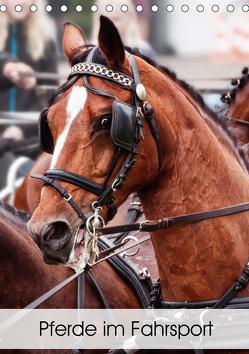 Pferde im Fahrsport (Tischkalender 2020 DIN A5 hoch) von Sixt,  Marion