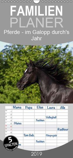 Pferde – im Galopp durch's Jahr – Familienplaner hoch (Wandkalender 2019 , 21 cm x 45 cm, hoch) von Hutfluss,  Jeanette