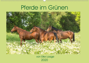 Pferde im Grünen (Wandkalender 2020 DIN A2 quer) von Laage,  Elke