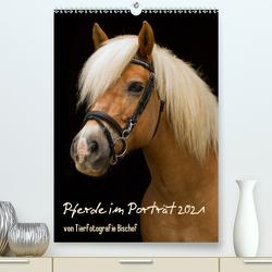 Pferde im Portait (Premium, hochwertiger DIN A2 Wandkalender 2021, Kunstdruck in Hochglanz) von Bischof,  Melanie, Bischof,  Tierfotografie
