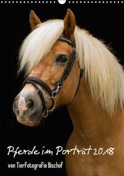 Pferde im Portait (Wandkalender 2018 DIN A3 hoch) von Bischof,  Melanie, Bischof,  Tierfotografie
