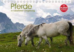 Pferde – In natürlicher Umgebung (Tischkalender 2019 DIN A5 quer) von Niederkofler,  Georg