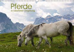 Pferde – In natürlicher Umgebung (Wandkalender 2019 DIN A3 quer) von Niederkofler,  Georg