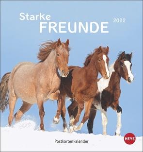 Pferde Postkartenkalender 2022 von Heye, Stuewer,  Sabine