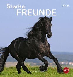 Pferde Postkartenkalender – Starke Freunde – Kalender 2019 von Heye