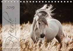 Pferde – Spiegel deiner Seele (Tischkalender 2019 DIN A5 quer) von Mischnik,  Sabrina