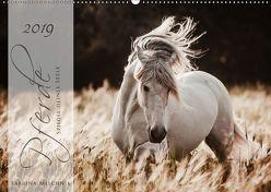 Pferde – Spiegel deiner Seele (Wandkalender 2019 DIN A2 quer) von Mischnik,  Sabrina