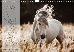Pferde – Spiegel deiner Seele (Wandkalender 2019 DIN A4 quer) von Mischnik,  Sabrina