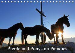 Pferde und Ponys im Paradies (Tischkalender 2019 DIN A5 quer) von Kramer,  Christa