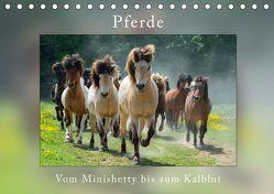 Pferde Vom Minishetty bis zum Kaltblut (Tischkalender 2019 DIN A5 quer) von Beuck,  Angelika