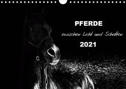 Pferde zwischen Licht und Schatten (Wandkalender 2021 DIN A4 quer) von Peters Artwork & Photographie,  Sabine