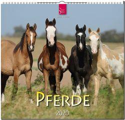 Pferde von Stuewer,  Sabine