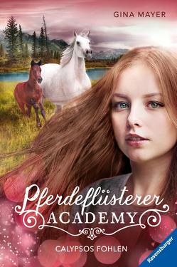 Pferdeflüsterer-Academy, Band 6: Calypsos Fohlen von Mayer,  Gina