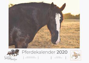 Pferdekalender 2020 von Waldow,  Michael, Wohlleben,  Sandy