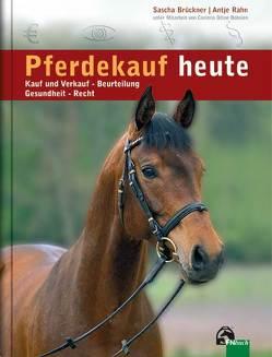 Pferdekauf heute von Bobsien,  Corinna O, Brückner,  Sascha, Rahn,  Antje