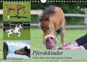 Pferdekinder – Fohlen haben ihren ganz eigenen Charme (Wandkalender 2018 DIN A4 quer) von Mielewczyk,  Barbara