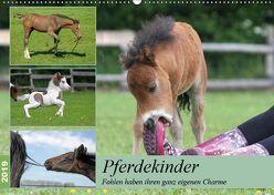 Pferdekinder – Fohlen haben ihren ganz eigenen Charme (Wandkalender 2019 DIN A2 quer) von Mielewczyk,  Barbara