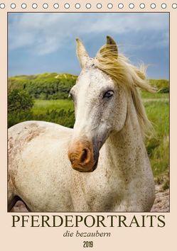 Pferdeportraits die bezaubern (Tischkalender 2019 DIN A5 hoch) von DESIGN Photo + PhotoArt,  AD, Dölling,  Angela
