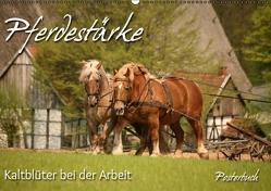 Pferdestärke (PosterbuchDIN A2 quer) von Berg,  Martina