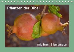 Pflanzen der Bibel (Tischkalender 2019 DIN A5 quer) von Vorndran,  Hans-Georg