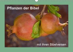 Pflanzen der Bibel (Wandkalender 2019 DIN A3 quer) von Vorndran,  Hans-Georg