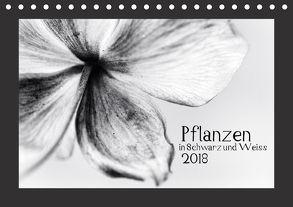 Pflanzen in Schwarz und Weiss / CH-Version (Tischkalender 2018 DIN A5 quer) von Karius,  Kirsten