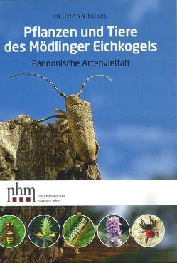 Pflanzen und Tiere des Mödlinger Eichkogels von Fischer,  Manfred A, Kusel,  Hermann