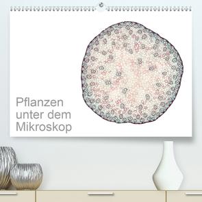 Pflanzen unter dem Mikroskop (Premium, hochwertiger DIN A2 Wandkalender 2021, Kunstdruck in Hochglanz) von Schreiter,  Martin