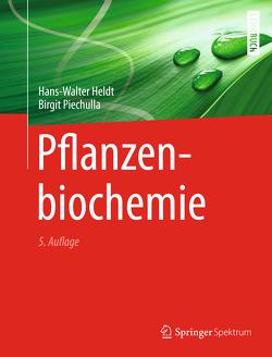 Pflanzenbiochemie von Heldt,  Hans Walter, Piechulla,  Birgit