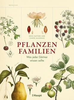 Pflanzenfamilien von Bayton,  Ross, Krabbe,  Wiebke, Maughan,  Simon