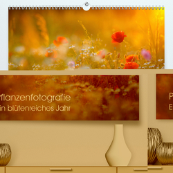 Pflanzenfotografie – Ein blütenreiches Jahr (Premium, hochwertiger DIN A2 Wandkalender 2020, Kunstdruck in Hochglanz) von Pohl,  Roman