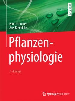 Pflanzenphysiologie von Brennicke,  Axel, Schopfer,  Peter