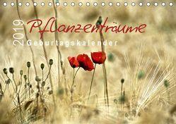 Pflanzenträume / Geburtstagskalender (Tischkalender 2019 DIN A5 quer) von Düll,  Sigrun