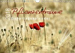 Pflanzenträume / Geburtstagskalender (Wandkalender 2018 DIN A4 quer) von Düll,  Sigrun