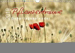 Pflanzenträume / Geburtstagskalender (Wandkalender 2019 DIN A4 quer) von Düll,  Sigrun