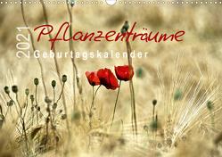 Pflanzenträume / Geburtstagskalender (Wandkalender 2021 DIN A3 quer) von Düll,  Sigrun