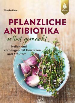 Pflanzliche Antibiotika selbst gemacht von Ritter,  Claudia