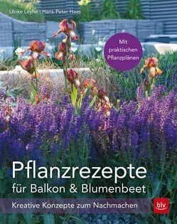 Pflanzrezepte für Balkon & Blumenbeet von Haas,  Hans-Peter, Leyhe,  Ulrike