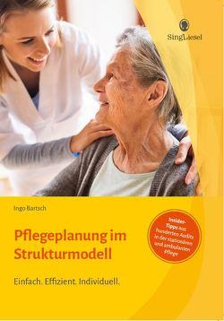 Pflegeplanung im Strukturmodell. Effizient und individuell beschreiben. von Bartsch,  Ingo