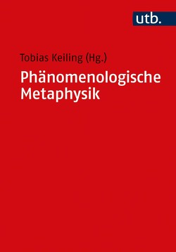 Phänomenologische Metaphysik von Keiling,  Tobias