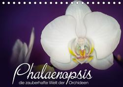 Phalaenopsis – die zauberhafte Welt der Orchideen (Tischkalender 2021 DIN A5 quer) von Strehl,  Deborah