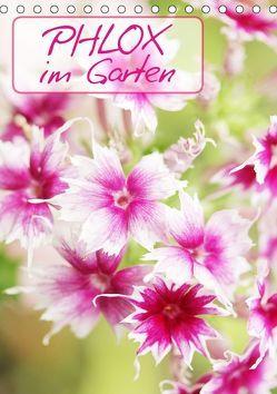 Phlox im Garten (Tischkalender 2019 DIN A5 hoch) von Kruse,  Gisela