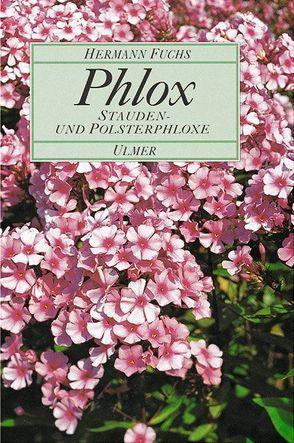 Phlox von Fuchs,  Hermann