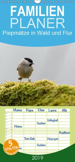 Piepmätze in Wald und Flur – Familienplaner hoch (Wandkalender 2019 , 21 cm x 45 cm, hoch) von Alberer,  Thomas