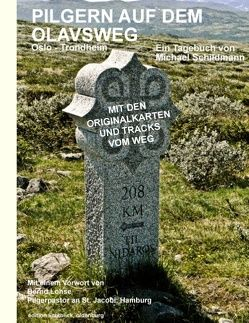 Pilgern auf dem Olavsweg von Schildmann,  Michael