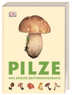 Pilze von Læssøe,  Thomas
